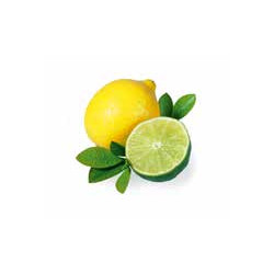 Esence do páry 5l citron